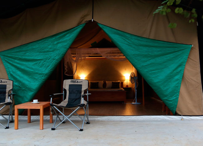 Leopard Trails Safari Camp in Wilpattu - Wilpattu Leopards Safari Camp - Leopard Trails in Wilpattu - Wilpattu Leopards Camp - Wilpattu Tented Safari Camp - Wilpattu leopard Trails - Leopard Trails in Wilpattu